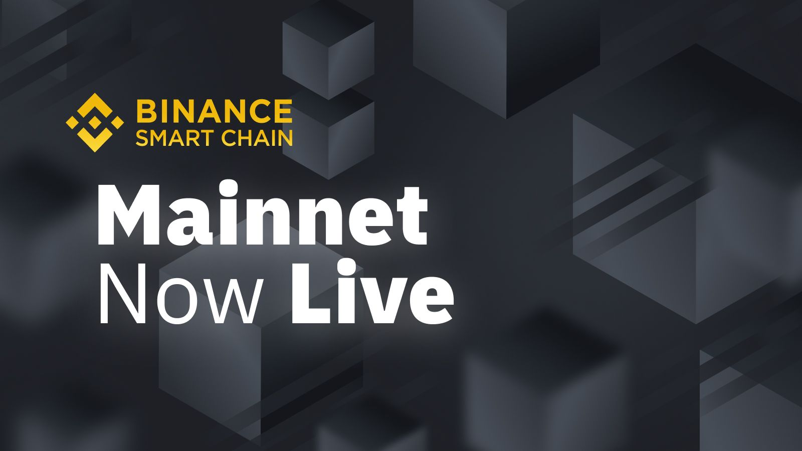 Binance Smart Chain Mainnet Launch