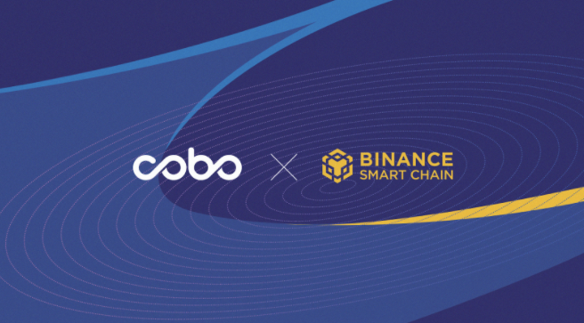 Cobo + Binance Smart Chain Goes Live, Further Expanding the DeFi Ecosystem