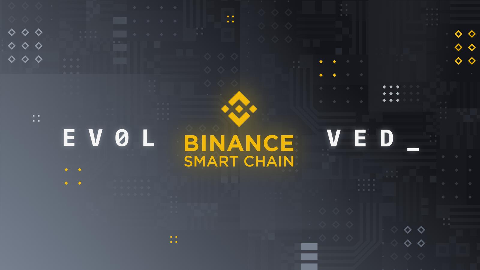 Binance Smart Chain Capacity Roadmap