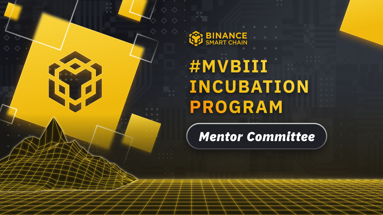 MVB Incubation Program: Introducing the Mentor Committee!