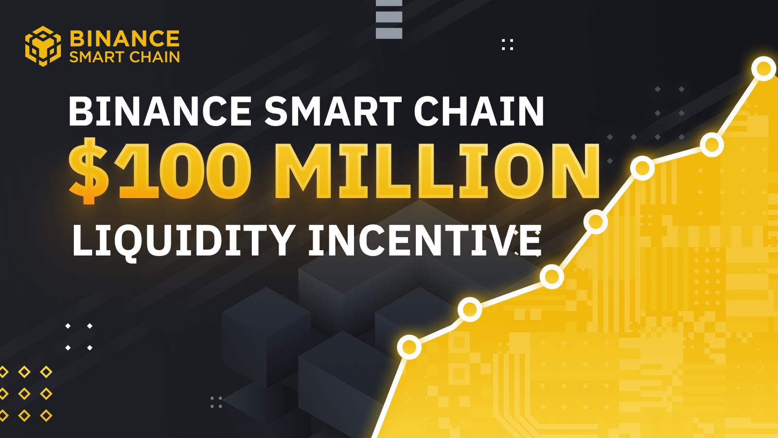 BSC Liquidity Incentive Program